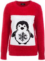 Two Way Penguin Sequin Knit Top