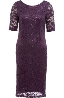 Anna Rose Lace And Sequin Midi Dress