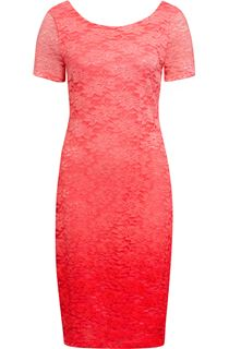 Anna Rose Ombre Short Sleeve Lace Midi Dress
