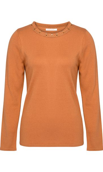 Anna Rose Jewelled Neck Knit Top Tan