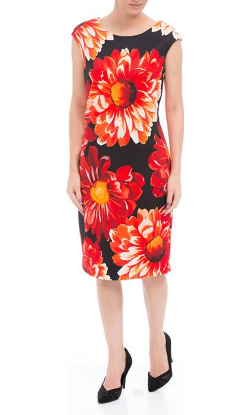 Bold Floral Sleeveless Midi Scuba Dress Black/Red