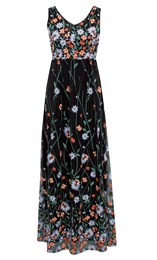 Border Garden Embroidered Mesh Maxi Dress Black/Multi - Gallery Image 1