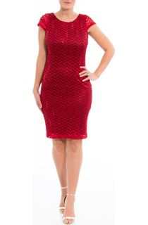 Fitted Lace Shift Dress