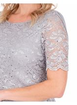 Short Sleeve Lace And Mesh Maxi Dress Silver Grey - Gallery Image 3