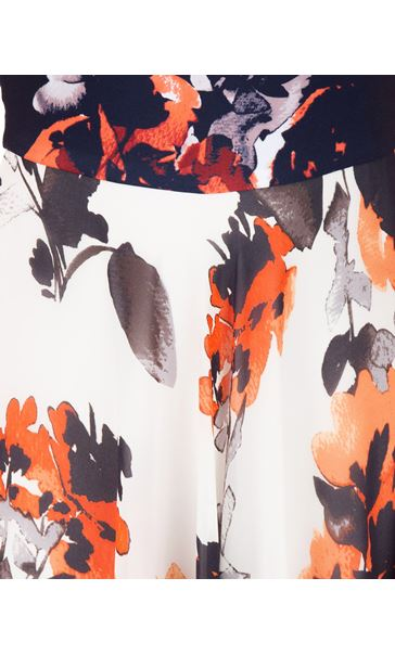 Sleeveless Floral Printed Midi Dress Midnight/Coral/Ivory - Gallery Image 3
