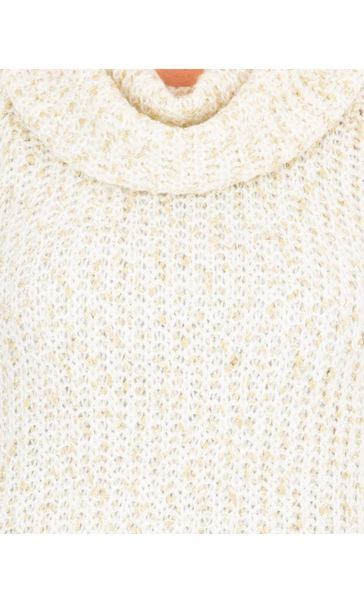 Anna Rose Shimmer Cowl Neck Knit Top Ivory/Gold - Gallery Image 4