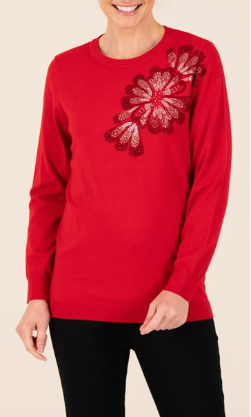 Anna Rose Embroidered Knitted Top - Red