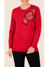 Anna Rose Embroidered Knitted Top