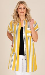 Striped Cotton Shirt Dress