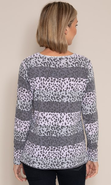 Anna Rose Stripe And Animal Print Knit Top